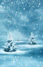 12月10日のコートについてお知らせ。